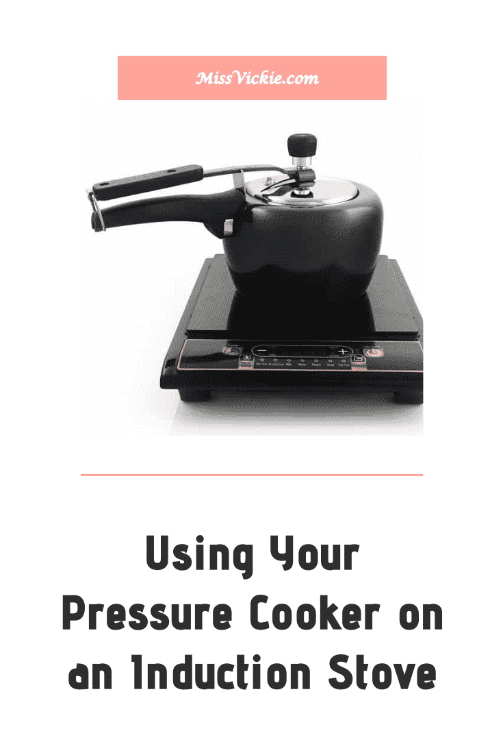 Can Pressure Cooker Be Used On An Induction Stove And Electric Stove