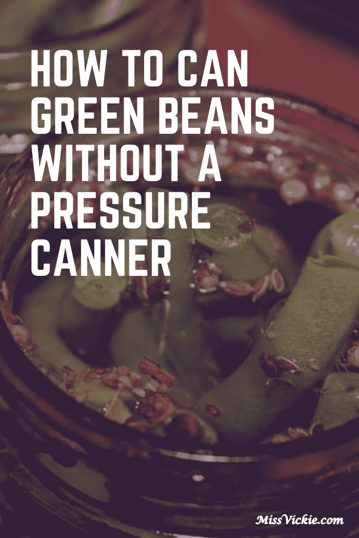 How To Can Green Beans Without Pressure Canner