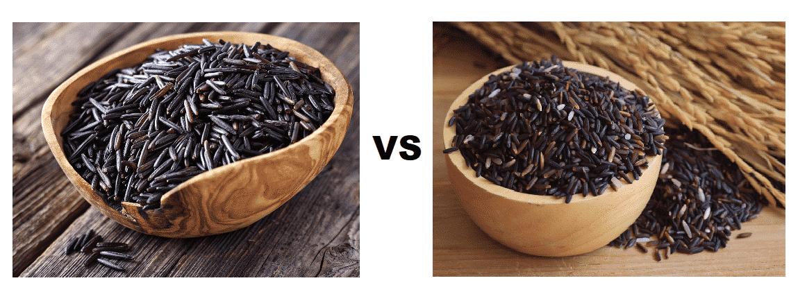 wild rice vs black rice