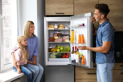 A working refrigerator makes life easier