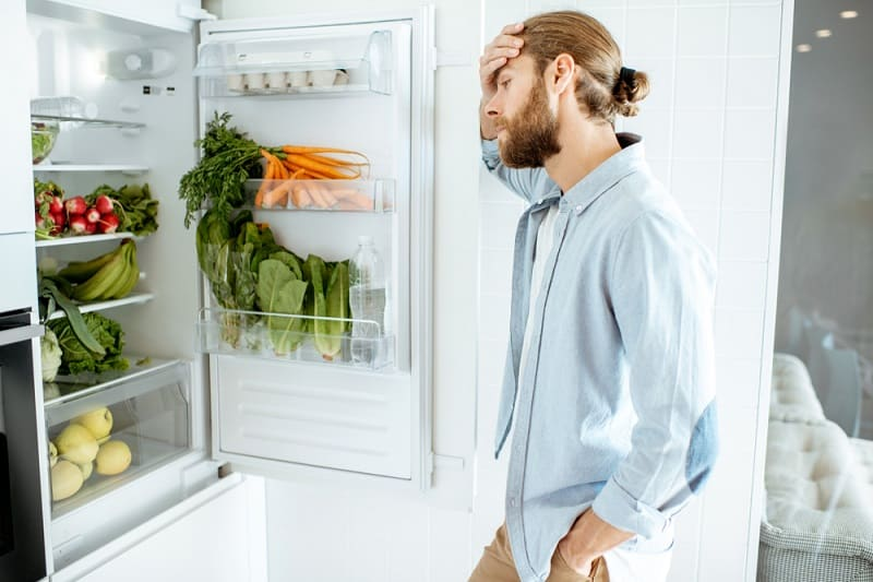 Fridge Stopped Working Then Started Again