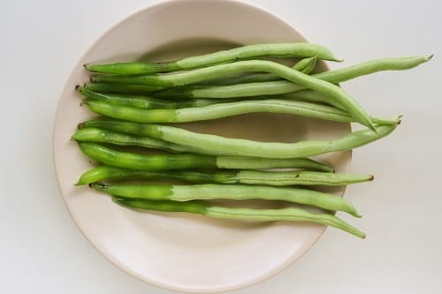 Green beans become slimy