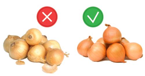 Avoid using sweet onion variety
