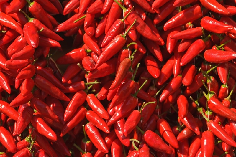 Calabrian Chili Substitute