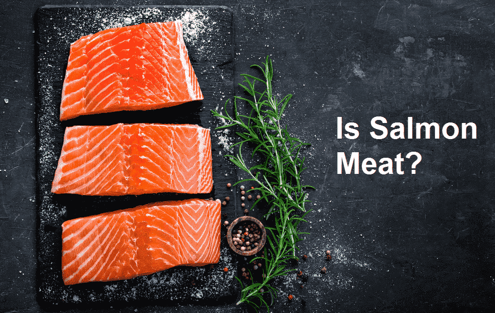 is salmon meat