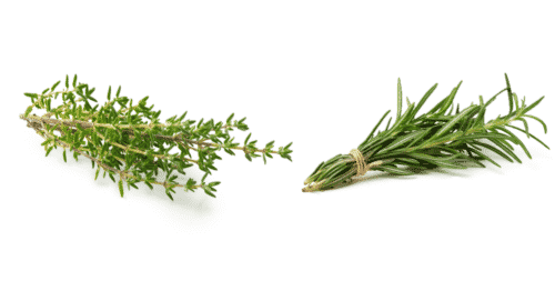 Thyme and rosemary