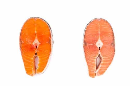 Wild salmon vs farmed salmon