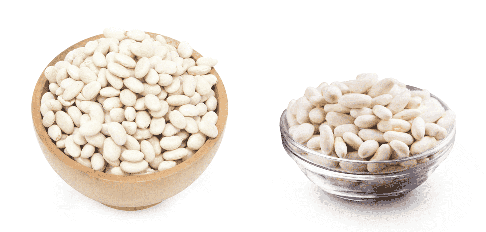 cannellini beans vs great northern