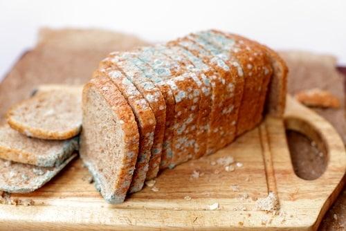 Mold on bread has a greenish-blue hue
