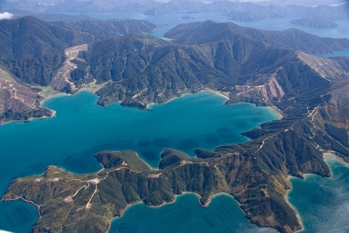 Mussel Farm in Marlborough Sounds, New Zealand
