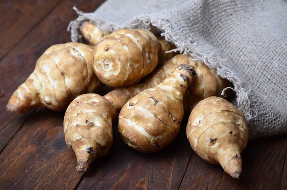 jerusalem artichoke substitutes