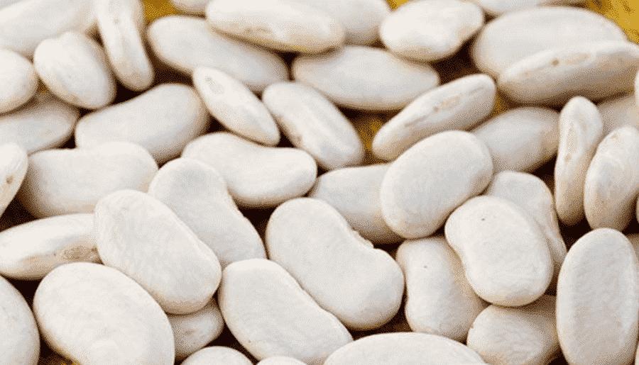 tarbais beans substitutes