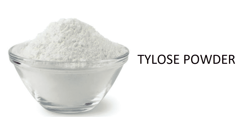 tylose powder substitute