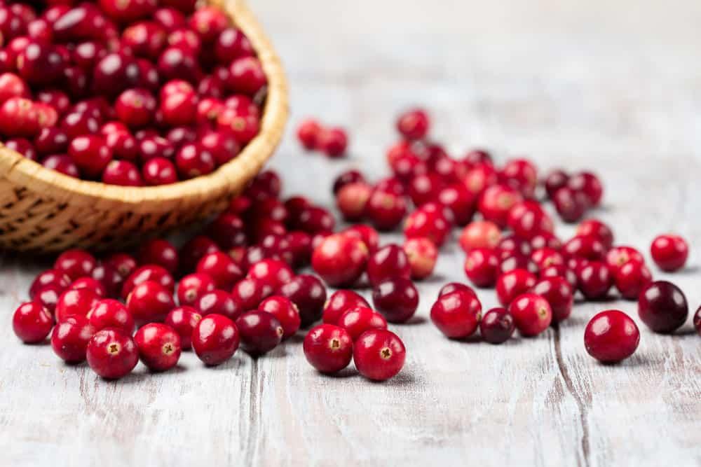 cranberry substitute