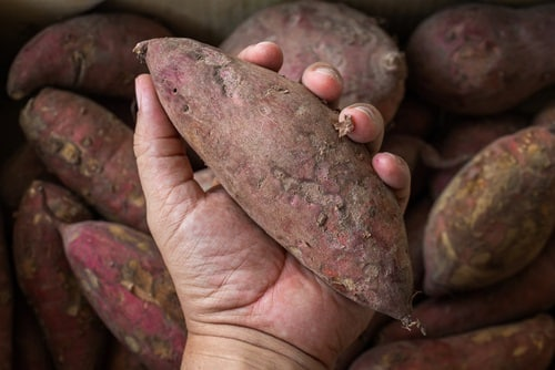Are Sweet Potatoes with Holes Bad?