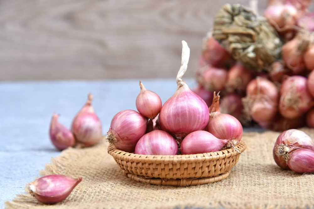 why are shallots so expensive